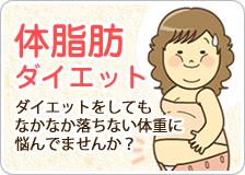 体脂肪ダイエット